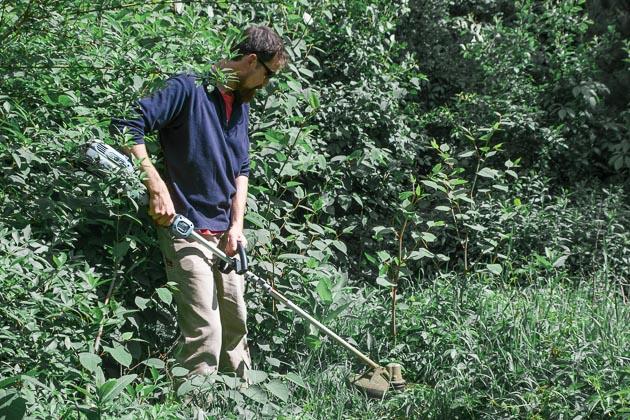 ryddesag som kutter gress